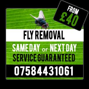 fly_service