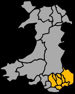Plattoon Pest Control area covered; Brynmawr, Ebbw Vale, Tredegar, Abertillery, Blaina, Nantyglo, Pontypool, Cwmbran, Blaenavon, Monmouth, Abergavenny, Raglan, Usk, Gilwern, Caerphilly, Merthyr Tydfil, Cardiff, Newport